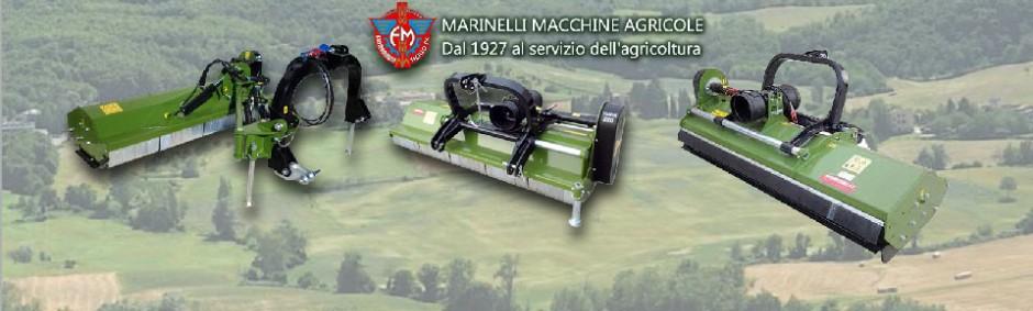 Marinelli produttore trinciatutto trinciasarmenti for Vendita trattori usati lazio